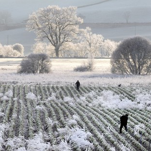 Heavy frost covers the landscape of Dunkeld in Perthshire as a cold snap begins to bite