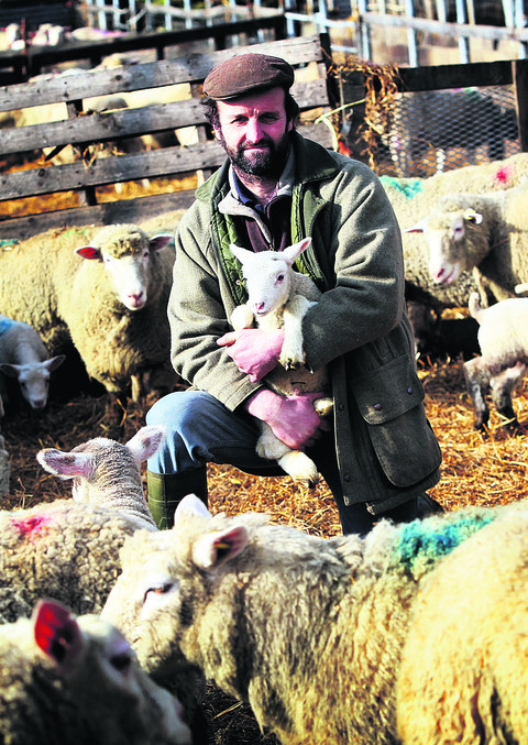 Shepherd David Barber at Warborough Farm, near Wantage, which has lost 300 lambs to Schmallenberg Disease. Picture: OX57383 Ed Nix