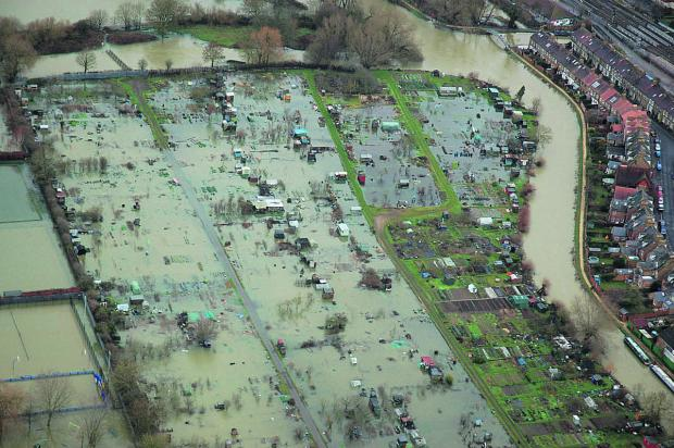 Allotments off Botley Road in Oxford inundated with water during the recent floods