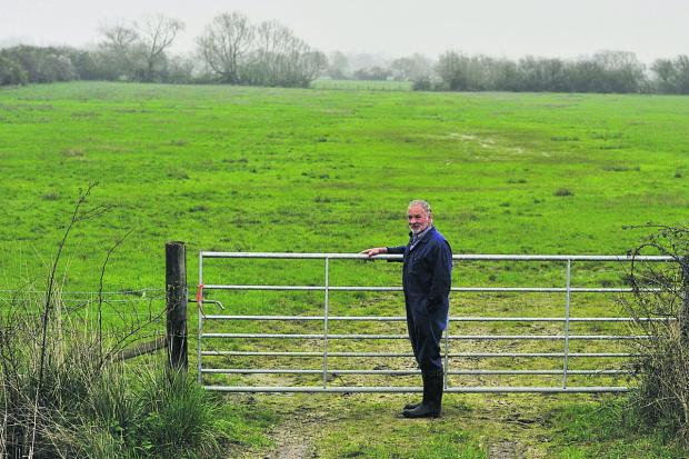 Farmer Brian Franklin at a field in Moorlands Farm in Murcot last week.     Picture: OX66375 Mark Hemsworth