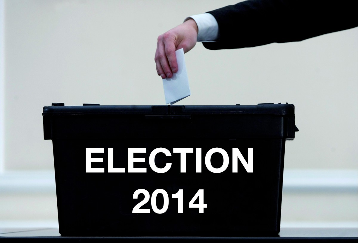 Council and European election candidates 2014