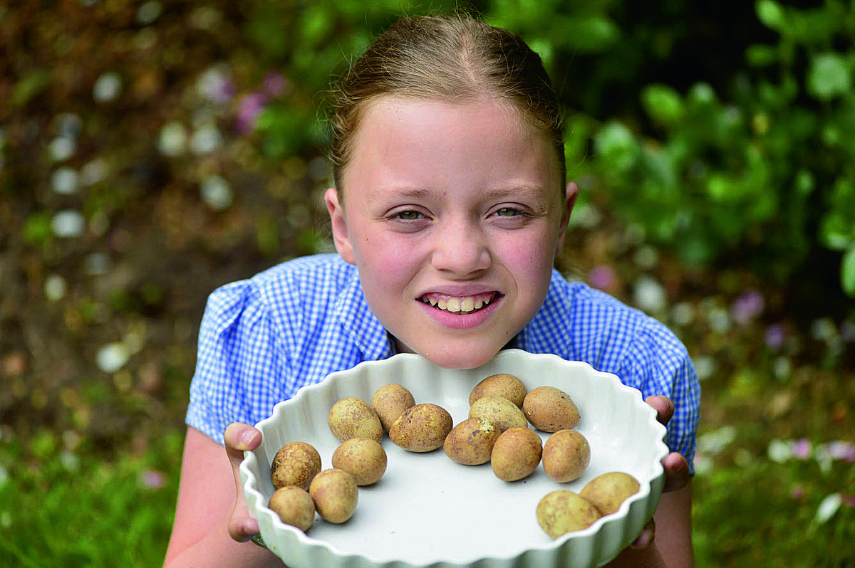 Fifteen eggs were found under a shrub in 10-year-old Daisy Spencer's garden. Mum Erika says they are unsure what type of eggs they are and have been looking for someone to identify them