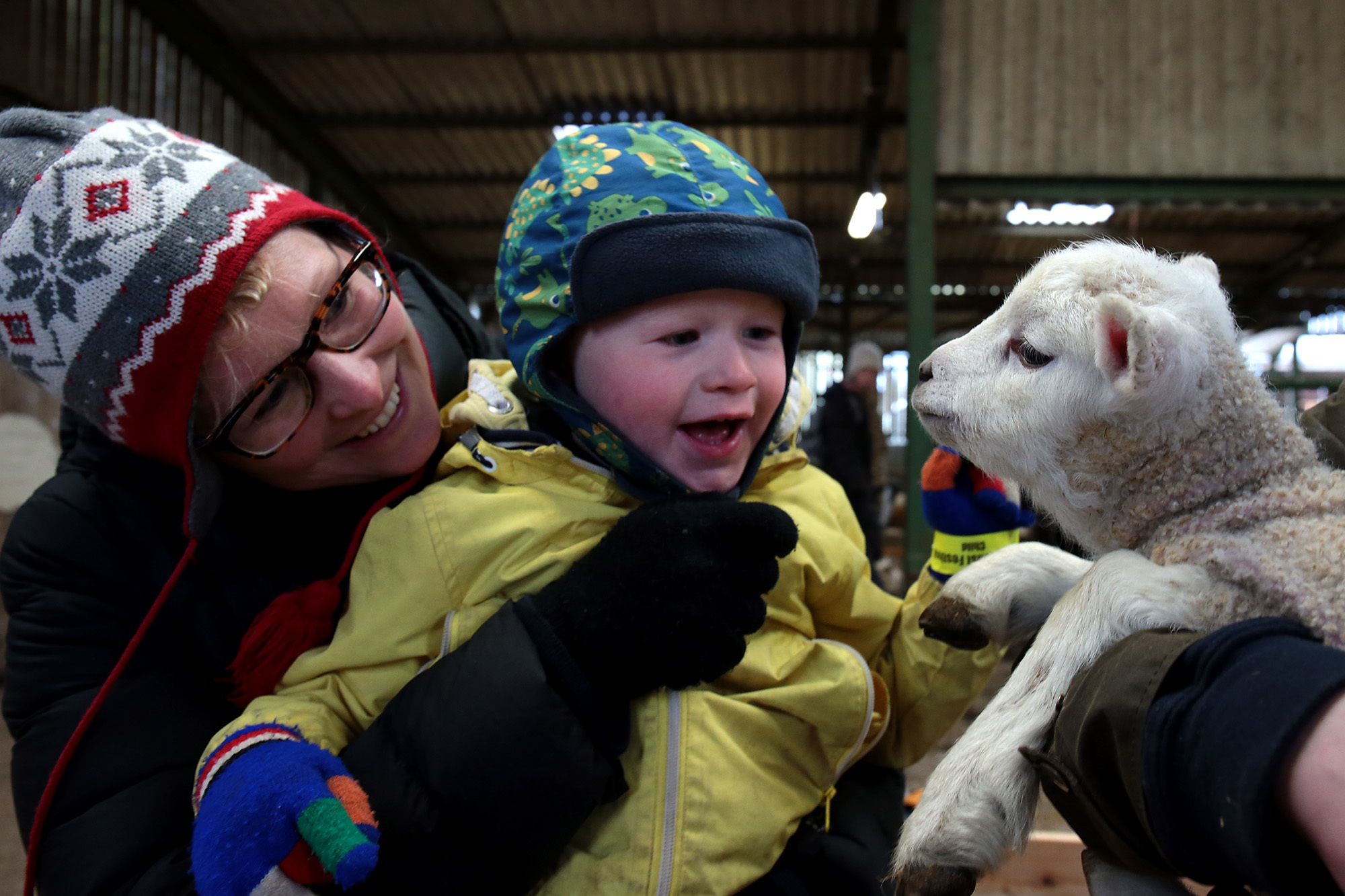One year old Zephyr Davies and mum Flora are  delighted by one of the lambs at the first day's visiting to th lambing at the Earth Trust in Long WittenhamPicture: Ric Mellis17/3/2018