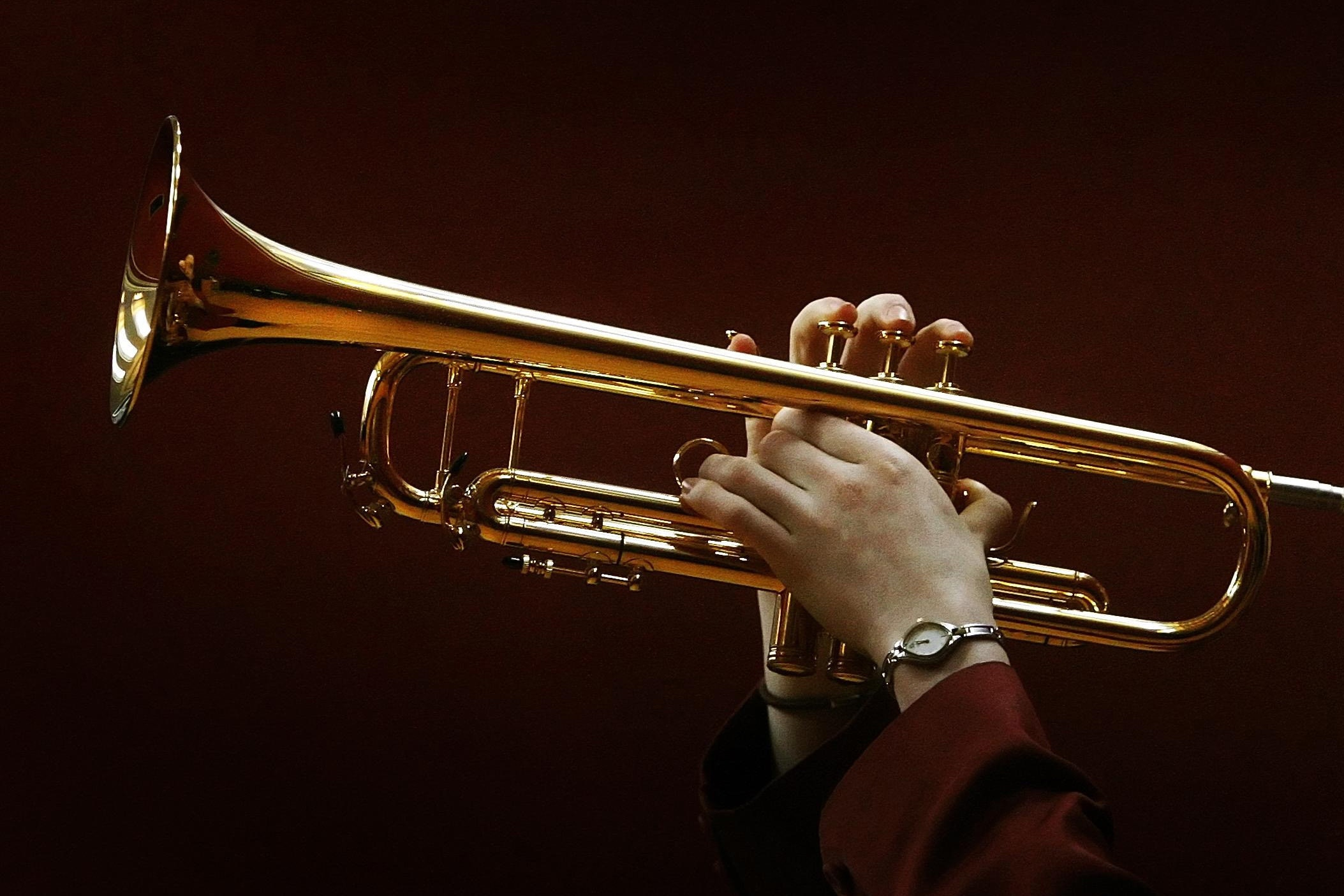 Music tuition decline will hit Scotland's culture, MSPs warned