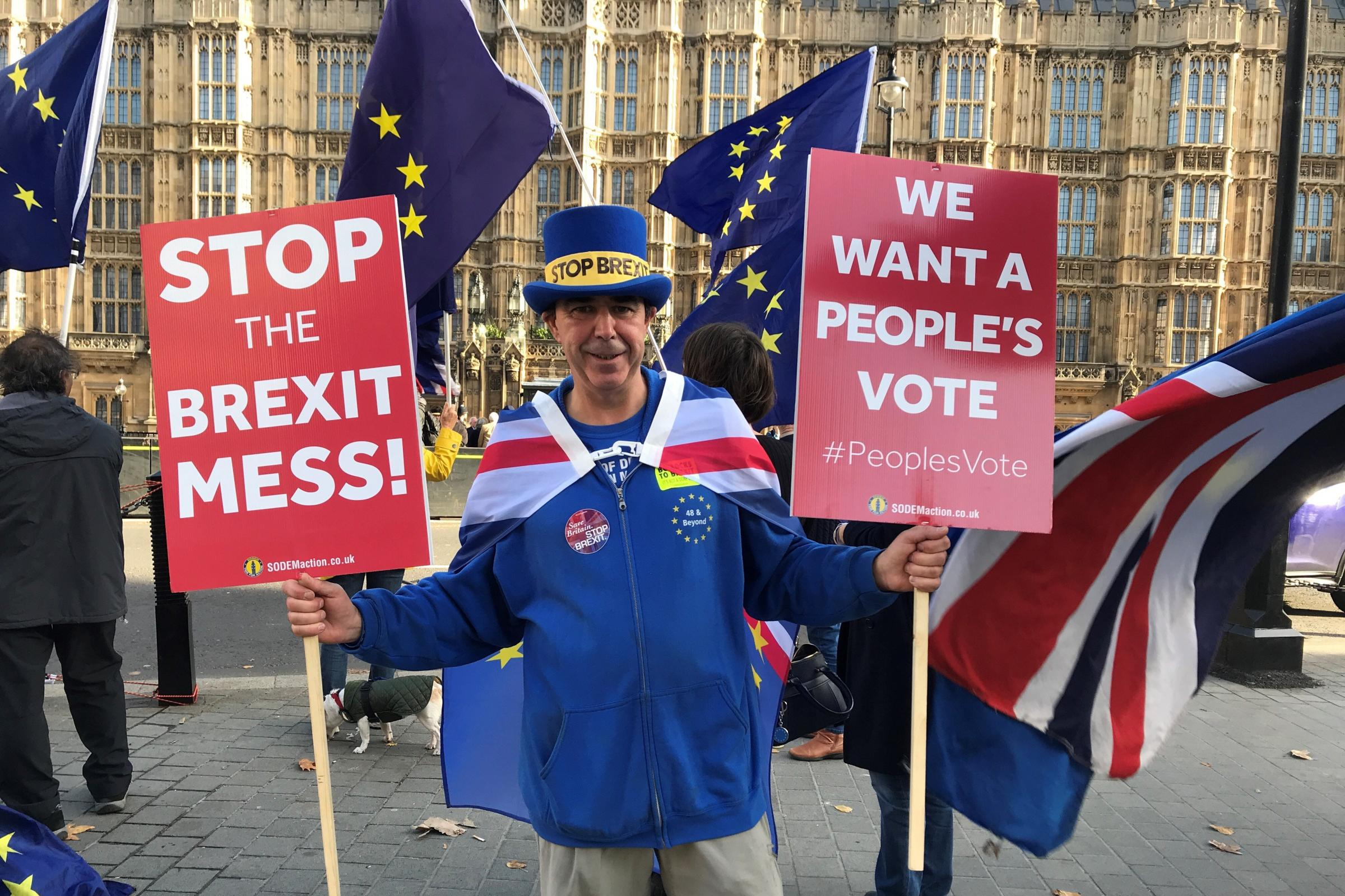 This 'stop Brexit' protester stole the show during a serious TV interview